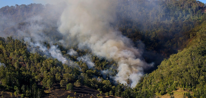 Risk of wildfires will rise with climate change