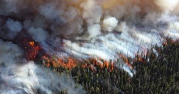 AI to predict wildfires