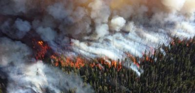 AI to predict wildfires