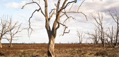 Australian droughts to become more intense
