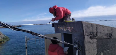 Real-time access to Antarctic tide data