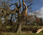 Improved tornado prediction for the UK