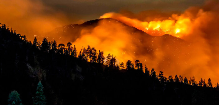 Wildfire mapping service to harness Earth observation, cloud computing and AI