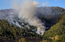 WMO wildfire